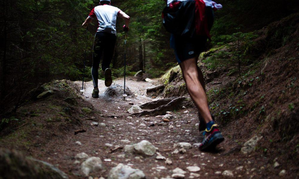 obozy biegowe dla dorosłych 2019