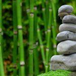 Piękny oraz porządny ogród to zasługa wielu godzin spędzonych  w jego zaciszu w trakcie pielegnacji.